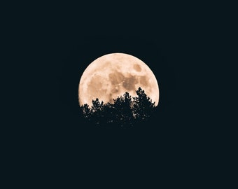 Halloween Meditation- Connect with the spirit of Halloween in this guided meditation