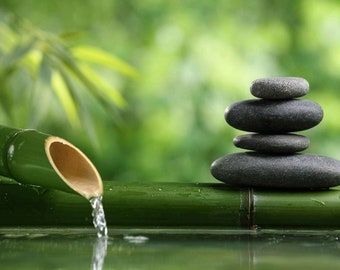 Stillness Short Meditation-A foundational meditation to create harmony and alignment with your higher consciousness