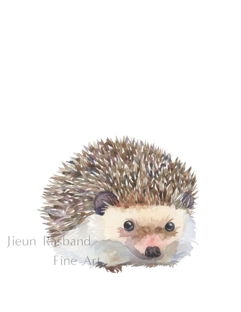 Baby Hedgehog Giclee Print of original watercolor painting image 0