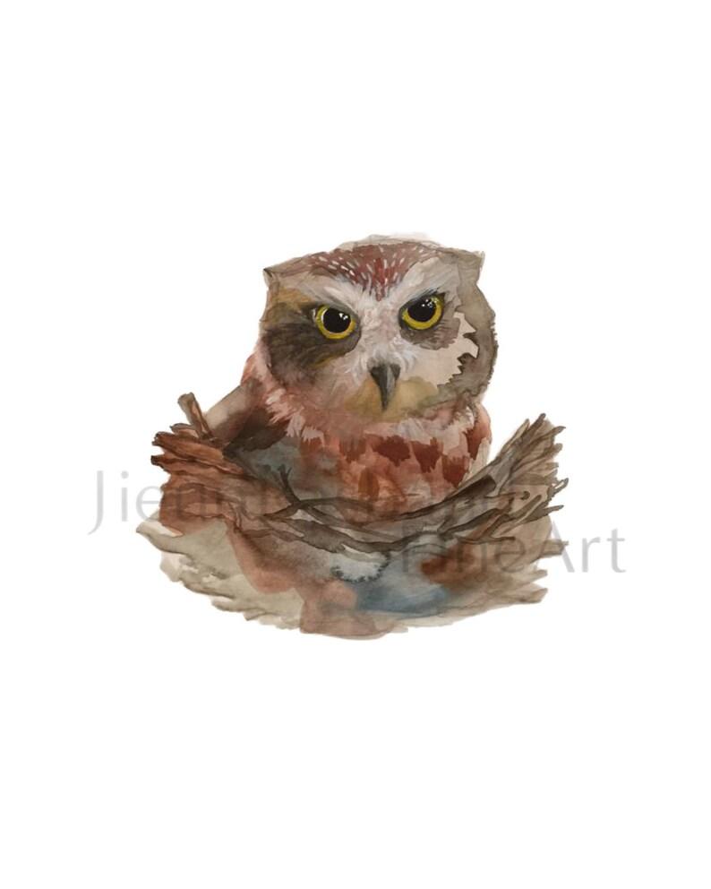 Baby Owl Instant Download 8x10 Original image 0
