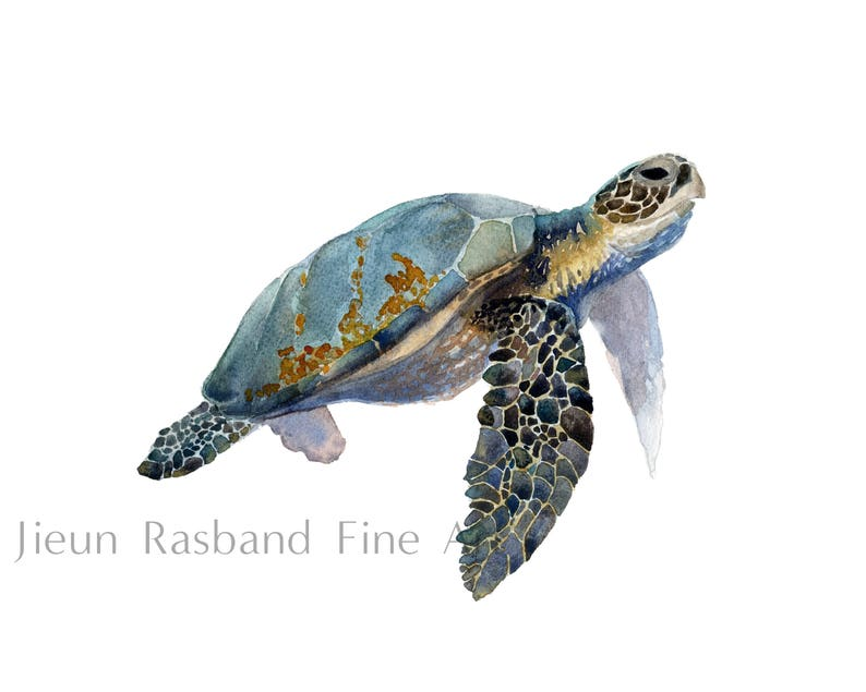 Sea Turtle Print  Original Watercolor Fine Art Print nursery image 0