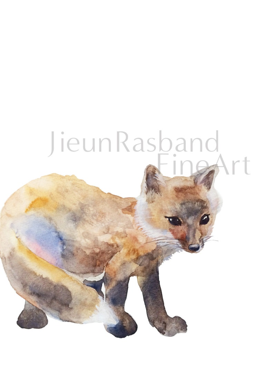 baby Fox instant print printable art animal print image 0