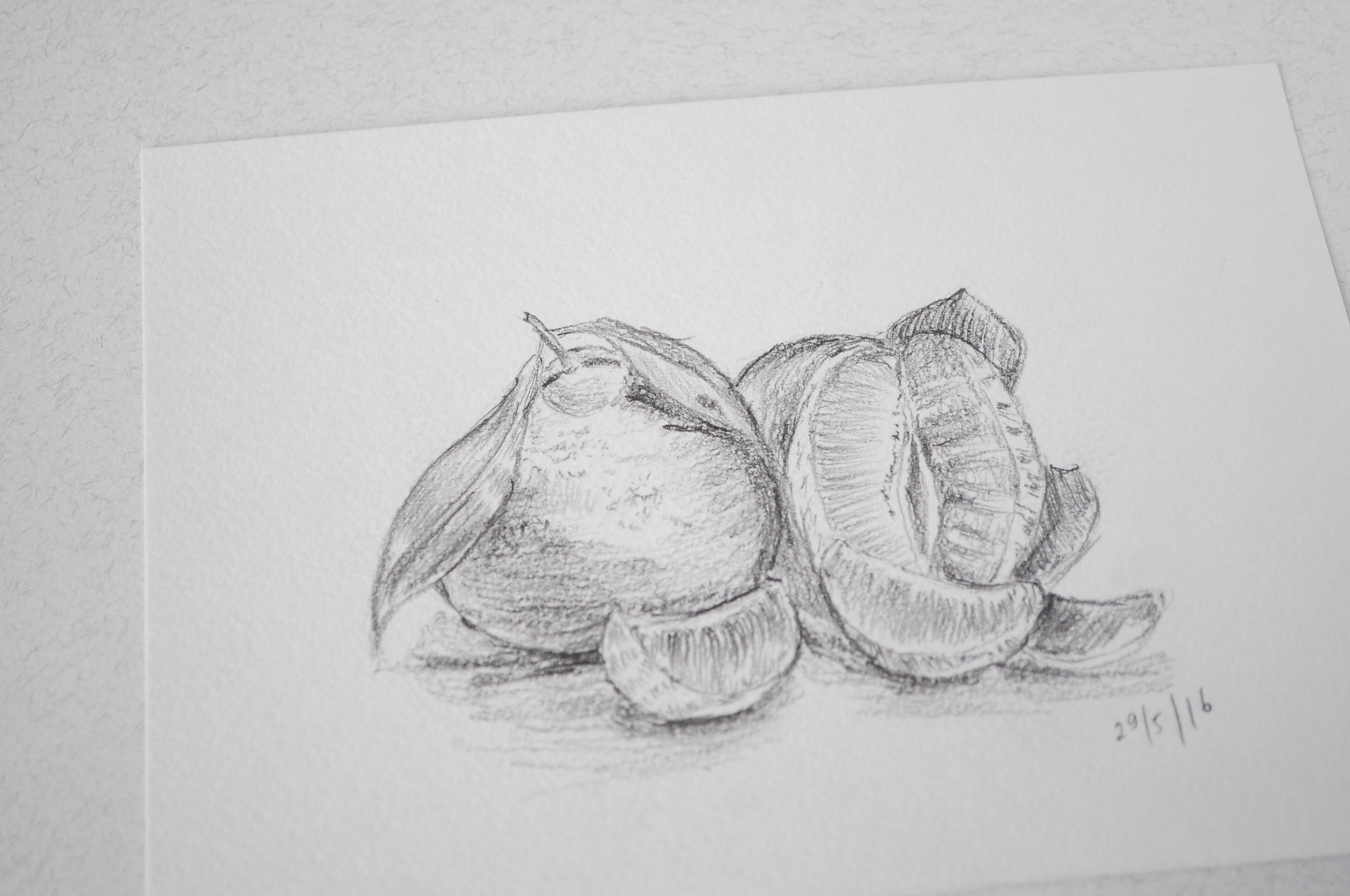 Set of 2 orange and apple pencil drawing