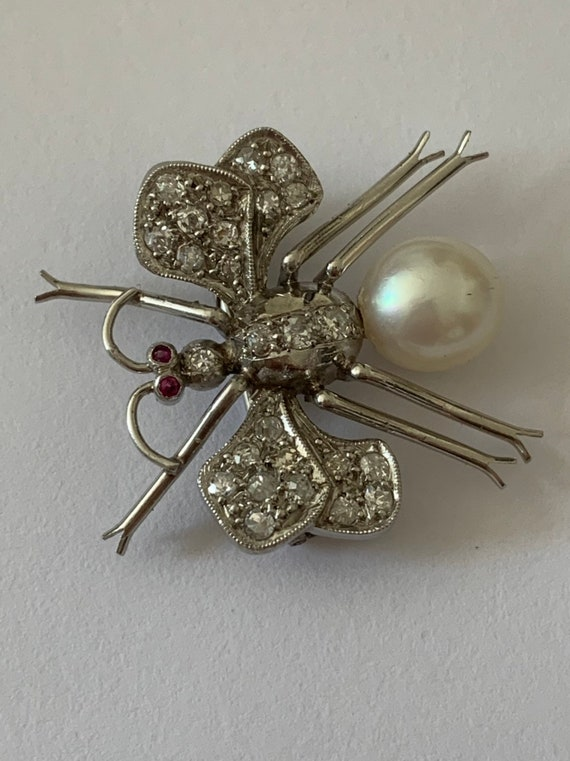 A Platinum Diamond Rubyband Pearl Insect Brooch