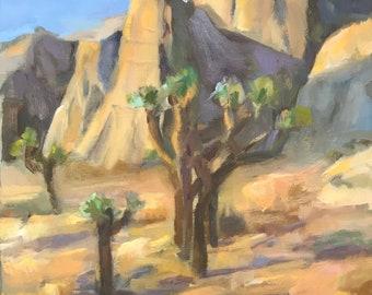 Joshua Trees in morning desert light
