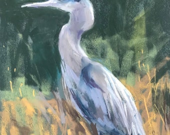 Pastel. The blue heron, gopher hunter