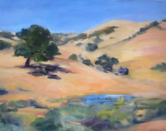 California Hills with watering hole