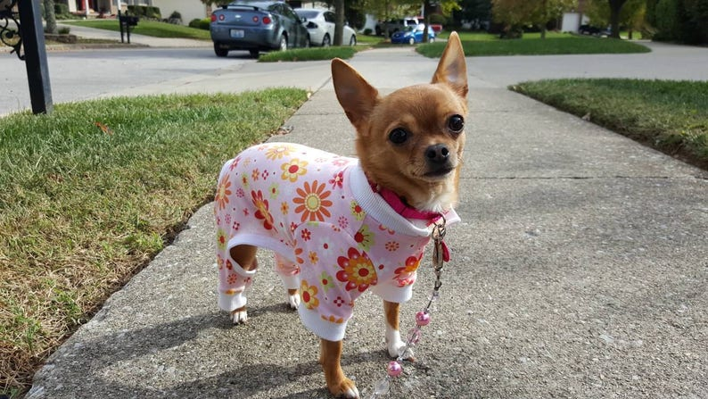RTS yellow flowered pet pajamas Pink red