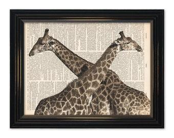 Giraffe dictionary art print. Giraffe's in love art on old dictionary book pages, 8x10 inch animal art wall decor art print.