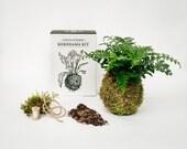 Kokedama Kit - Make Your Own Kokedama 'String Garden'