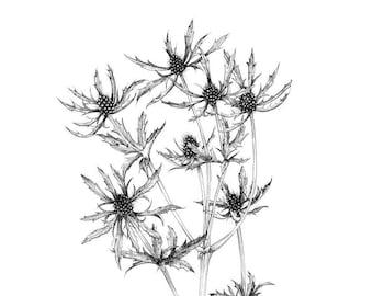 modern plant prints, botanical artwork, nature inspired, art prints, farm house style, modern farmhouse, minimalist poster, wall art