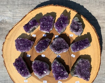 """Medium Amethyst Clusters """"1-12"""" / Protection / Purification / Spirituality"""