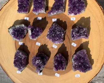 """Small Amethyst Clusters """"1-12"""" / Protection / Purification / Spirituality"""