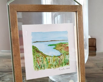 Growing Wild Small Original watercolour floral painting of Breakwater  Reserve in Wales on paper framed