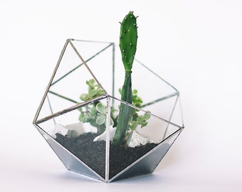 Geometric Glass Terrarium 21 cm # Icosahedron #  Modern Planter for Indoor Gardening