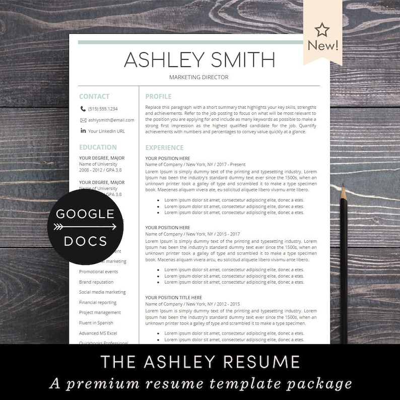 Google Docs Resume Template Professional Resume Cv Template Free Cover Letter Creative Modern Resume Maker For Google Doc Ashley