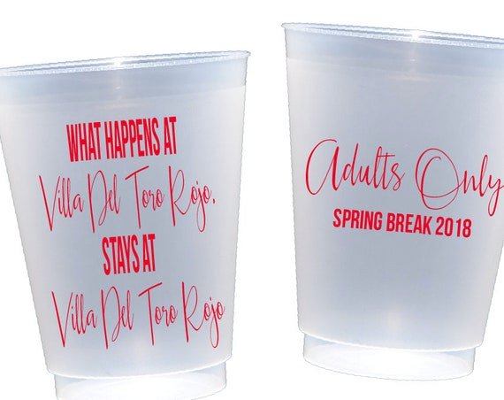 Spring break cups, adult spring break, girls weekend, personalized cup, shatterproof cups, frosted cups, frost flex cups,  custom party cups