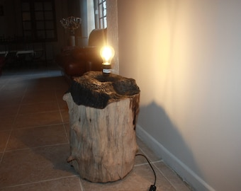 industrial lighting, end table drift wood, contemporary light