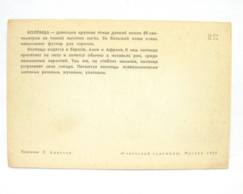 1968 Unused Postcard Bird Russian USSR Illustration by Aristov Soviet Vintage Postcard Spoonbill
