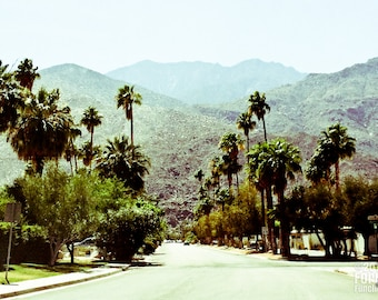 photography, Palm Springs, California, midcentury, modern, nostalgic, Alexander, Eichler, Eames, desert, palm tree, architecture
