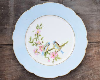 Bird Plate, Haviland Limoges, Light Blue, Titmouse,Dogwood Flowers, Scalloped Edge, Pink Flowers, CFH GDM,Eurasian Blue Titmouse, Bird Plate