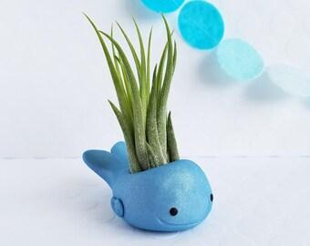 Whale Air Plant Holder, Air Planter, Garden Decor, Ocean Decor, Gardening Gift, Gift for Her, Desk Accessory, Best of Summer, Animal Planter