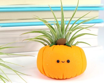 Pumpkin Air Plant Holder, LIMITED EDITION Fall Planter, Fall House Decor, Best of Fall, Thanksgiving Decorations, Autumn Gift, Desk Decor