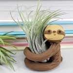 Sloth Air Plant Holder, Gift Women, Small Sloth Planter, Gift for Him, Best of Fall, Air Planter Gift, Unique Gift, Desk Accessory, Gift Men
