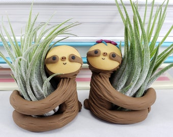 Sloth Air Plant Holders, Kawaii Gift, Sloth Planter, Gift for Her, Mother's Day Gift, Sloth Decor, Desk Accessory, Air Plant Holders