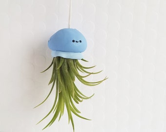 Jellyfish Air Plant, Kawaii, Hanging Air Plant, Air Plant Gift, Gift for Her, Best of Summer, Ocean Decor, Air Plant Holder, Office gift
