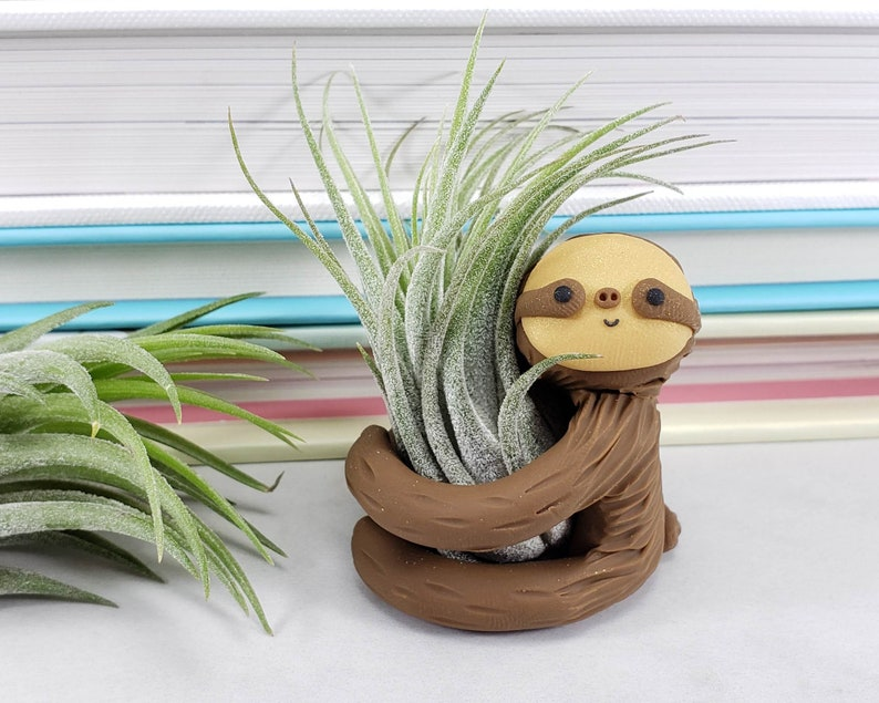 Sloth Air Plant Holder Gift Women Small Sloth Planter Gift image 0