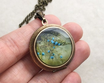 Juniper Berry Round Locket - Ethereal Fine Art Photo Brass Locket Necklace - Blue Woodland Fairytale