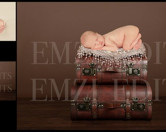 Digital Newborn Photography Prop Background Backdrop (Vintage Suitcases)
