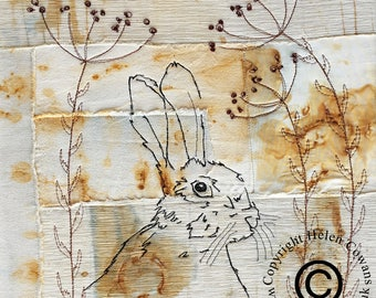 Mounted fine art print of a Watchful Hare