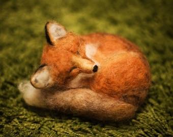Fox, original fine art photography, print, 8x12, red, felt, green, nature, autumn, nature, united kingdom, hungary