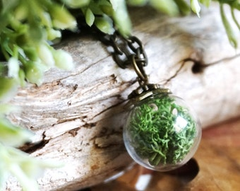Real Moss Necklace Terrarium Necklace Green Plant Jewelry Glass Terrarium Jewelry Botanical Jewelry Glass Vial Necklace Terrarium Pendant