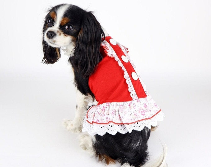 Red Dog Sun Dress