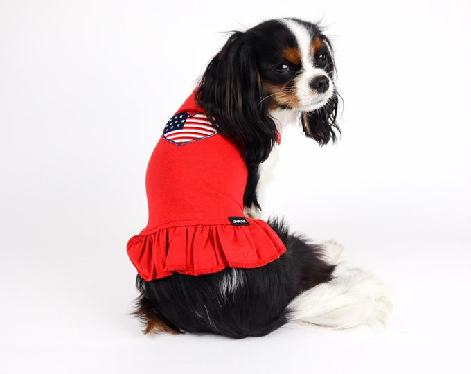 Red, White & Blue Americana Dog Dress