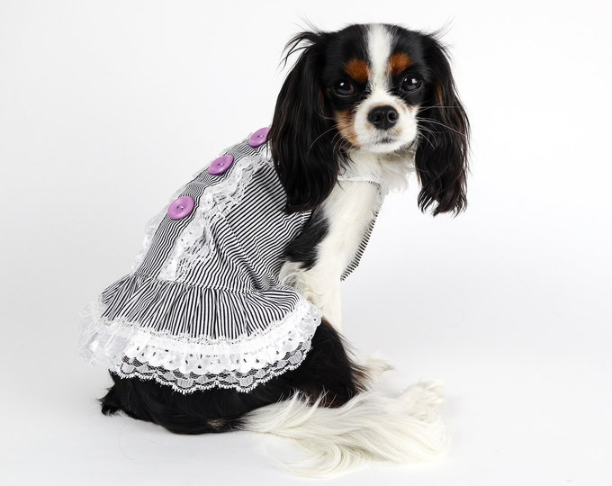 Pinstriped Dog Sun Dress