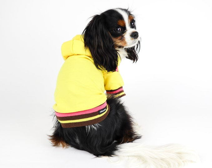 Yellow Retro Hoodie Small Dog Jacket