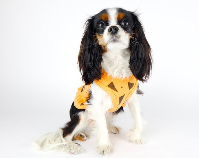 Pebbles Flintstone Dog Outfit