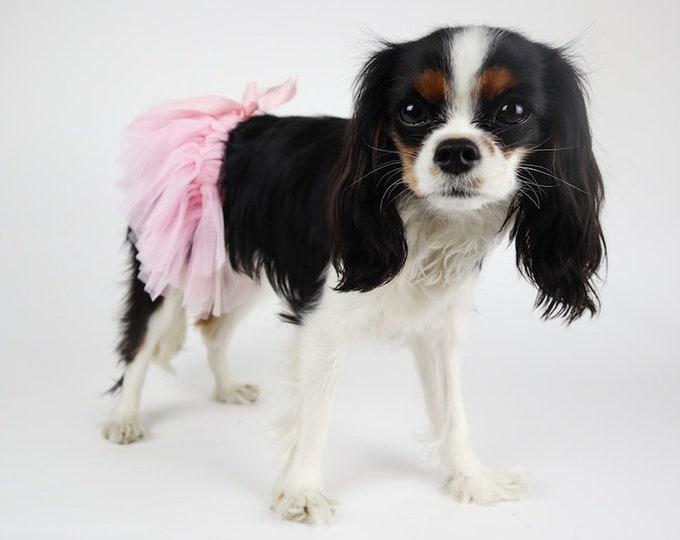 Dog Tutu:  Stretchy Elastic Waistband, Soft Tulle
