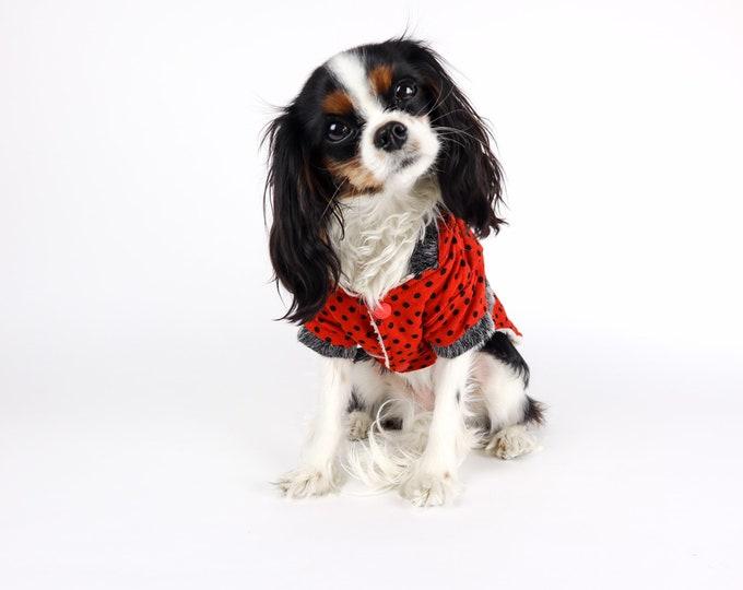 Polka Dot Dog Sweater
