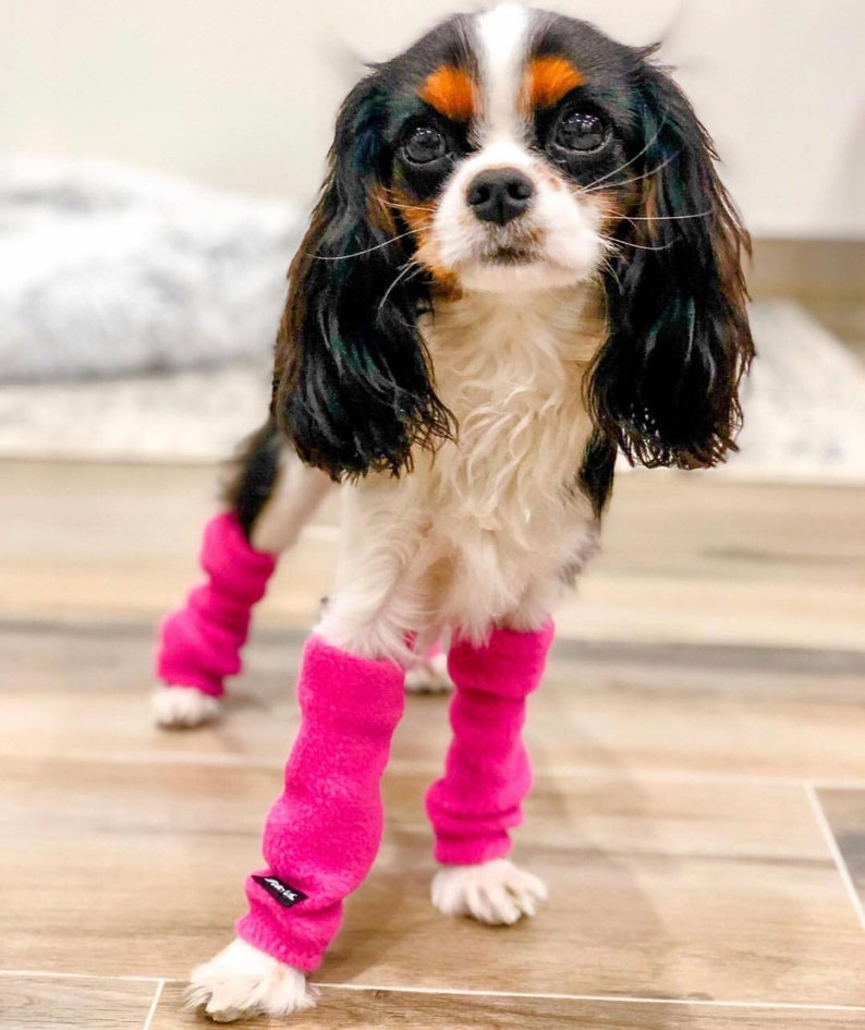 Dog Leg Warmers SET OF 2 FRONT Legs   Etsy
