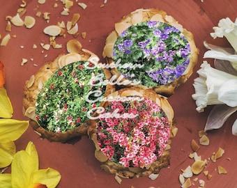 Edible Flower Cake Wrap/Sheet Cake Topper ED88JPW-Flower Cookies, cake topper-edible cake decorations-edible personalized party cake wrap