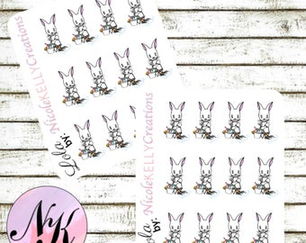 Exclusive custom character Stickers, 12 Stickers, Cleaning sticker, stickers, use with Erin Condren Planner(TM), Happy Planner,Planner
