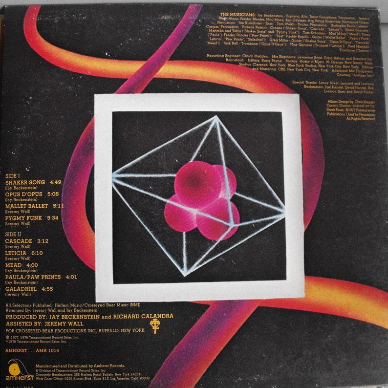 Spyro Gyra, Self-Titled Album, Vintage Record Album, Vinyl LP, American  Jazz Fusion Band, Smooth Jazz Classics, Funk, Pop Music