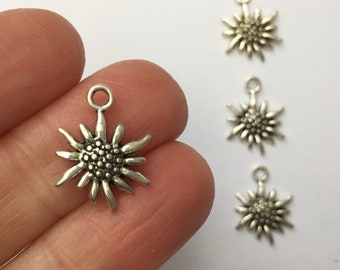 10 Edelweiss Flower Charms Antique Silver Tone SC851