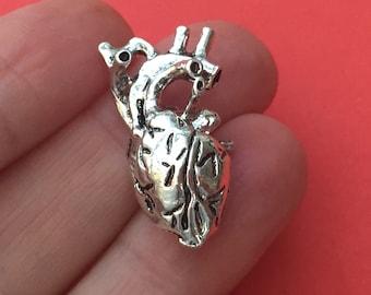 BULK 5 Human Anatomical Heart Charms Antique Silver - ANA01