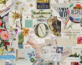 Inner Compass Digital File